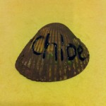 在学校弄的颜色贝壳